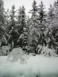 Vinterstövlar på