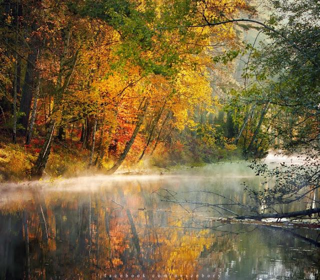 Wielki Kanał Brdy, autumn