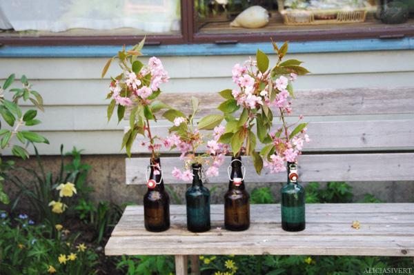 aliciasivert, alicia sivertsson, bottle, bottles, cherry blossom, flowers, flower, flaska, flaskor, glasflaska, glasflaskor, saftflaska, saftflaskor, körsbär, körsbärsblom, blommor, blomma, blomster