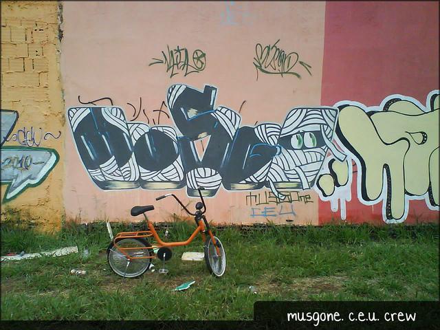 Mutirão de grafite riacho fundo 2