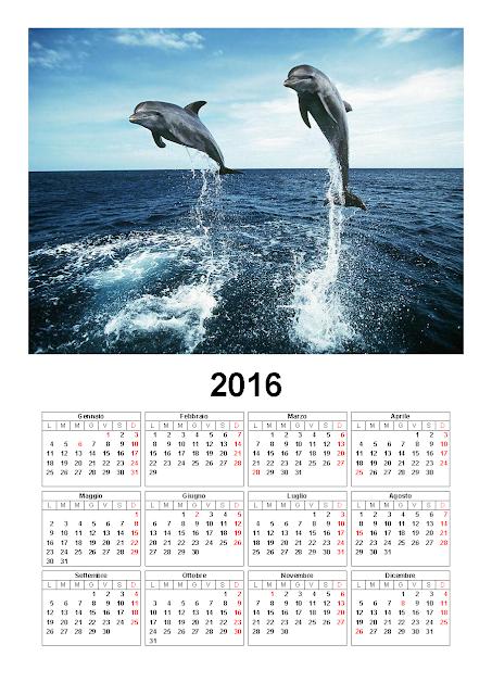 Calendario 2016 - delfini