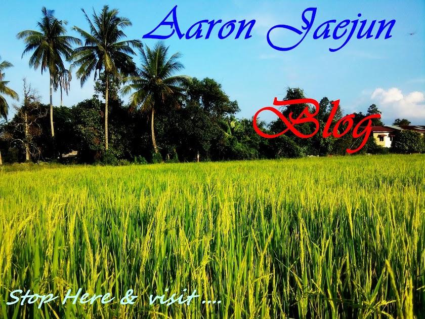 Aaron Jaejun  Blog
