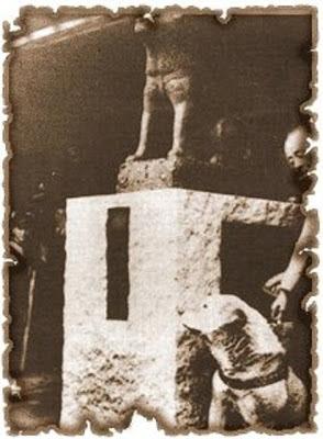 hachiko junto a su estatua