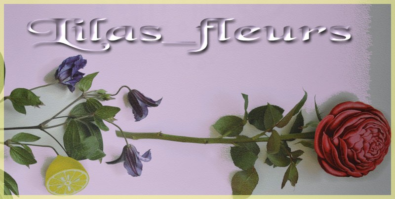 Lilas-Fleurs