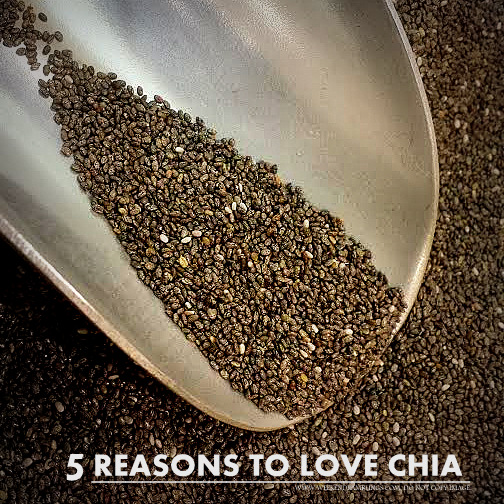 Chia Seeds - Superfoods - Health Nutrition Benefits