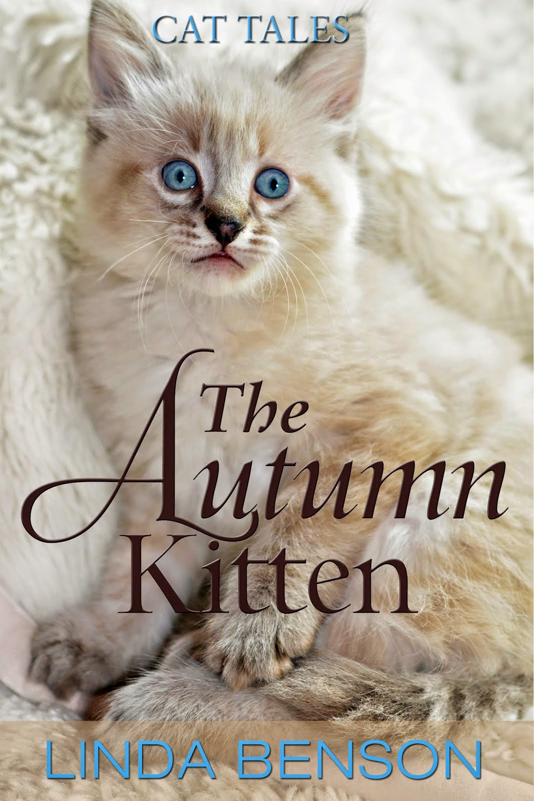 The Autumn Kitten - only $0.99