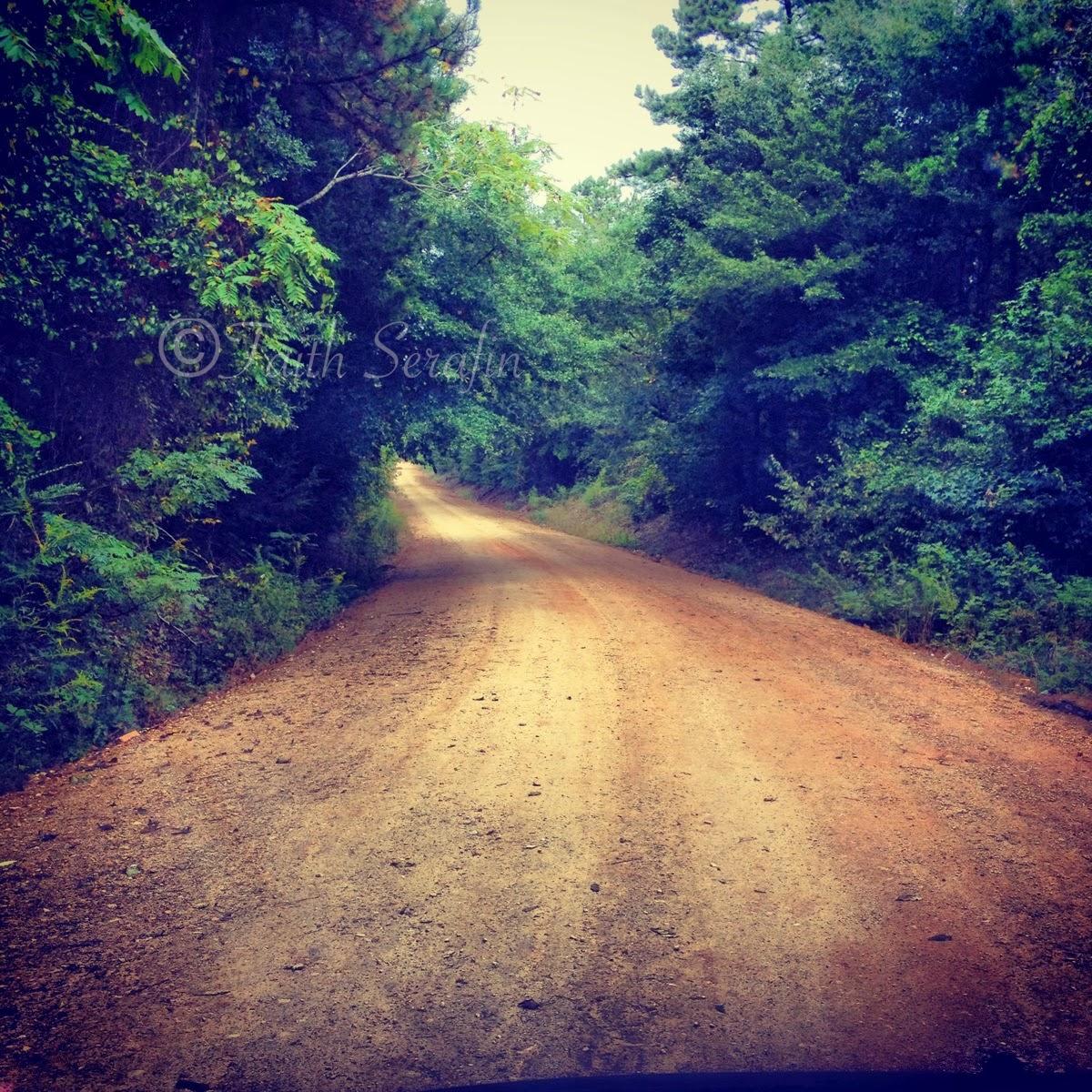 Alabama lee county salem - The Forgotten In Lee County Alabama