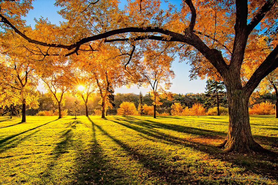 31. Beautiful Ijen by tropicaLiving - Jessy Eykendorp