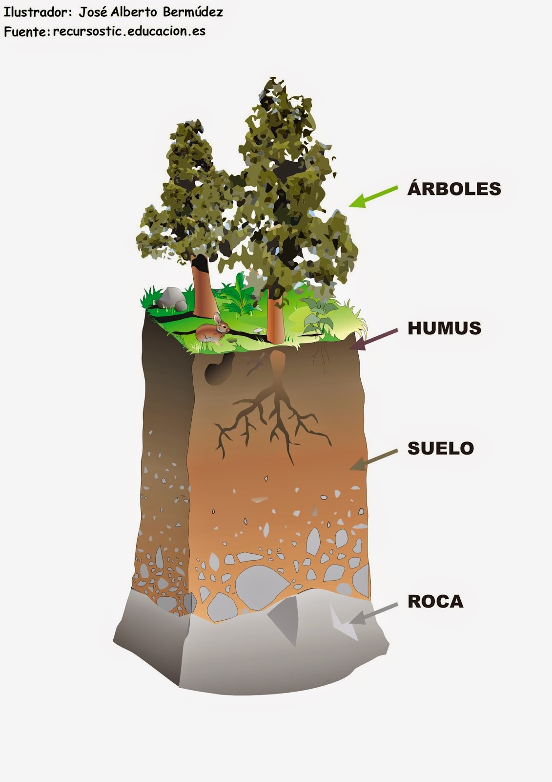 Blog de tercero de alfonso x el sabio de arcos de la for El suelo y sus capas