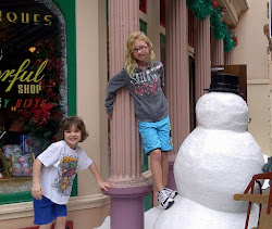 Vacation in Florida at Disney
