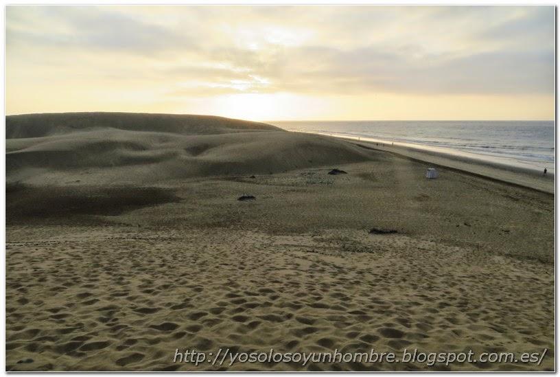 vista de la playa y las dunas de Maspalomas