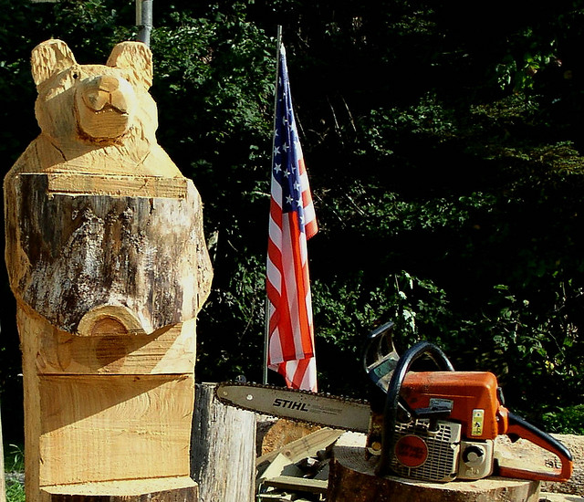 The carpetbagger tree carver world famous champion