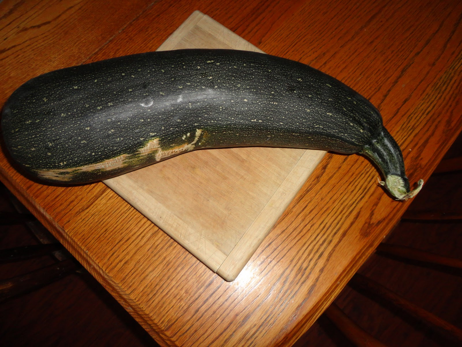 home grown, homemade: attack of the monster zucchini!!!!