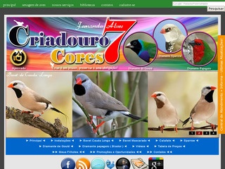 Criadouro 7 Cores