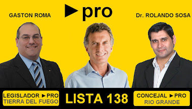 PRO - Lista 138 - Vota proyectos