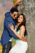 Soukyam movie photos gallery-thumbnail-4