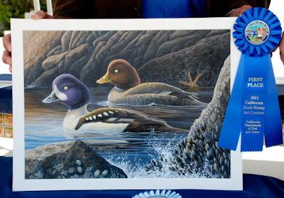 2011 California Duck Stamp by Shari Erickson