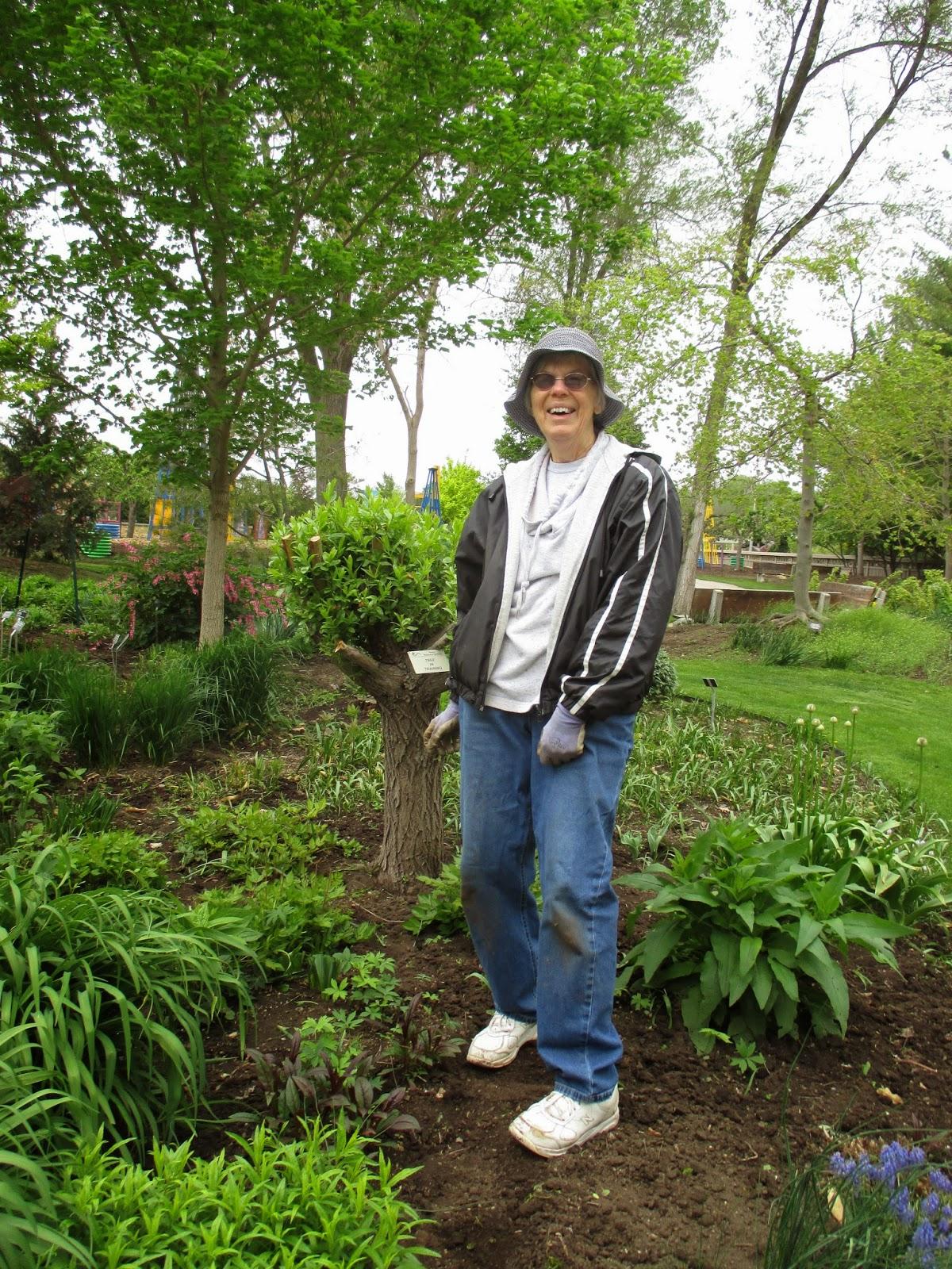 winter chill returns rotary botanical gardens