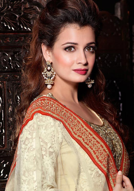Dia Mirza HD Wallpaper