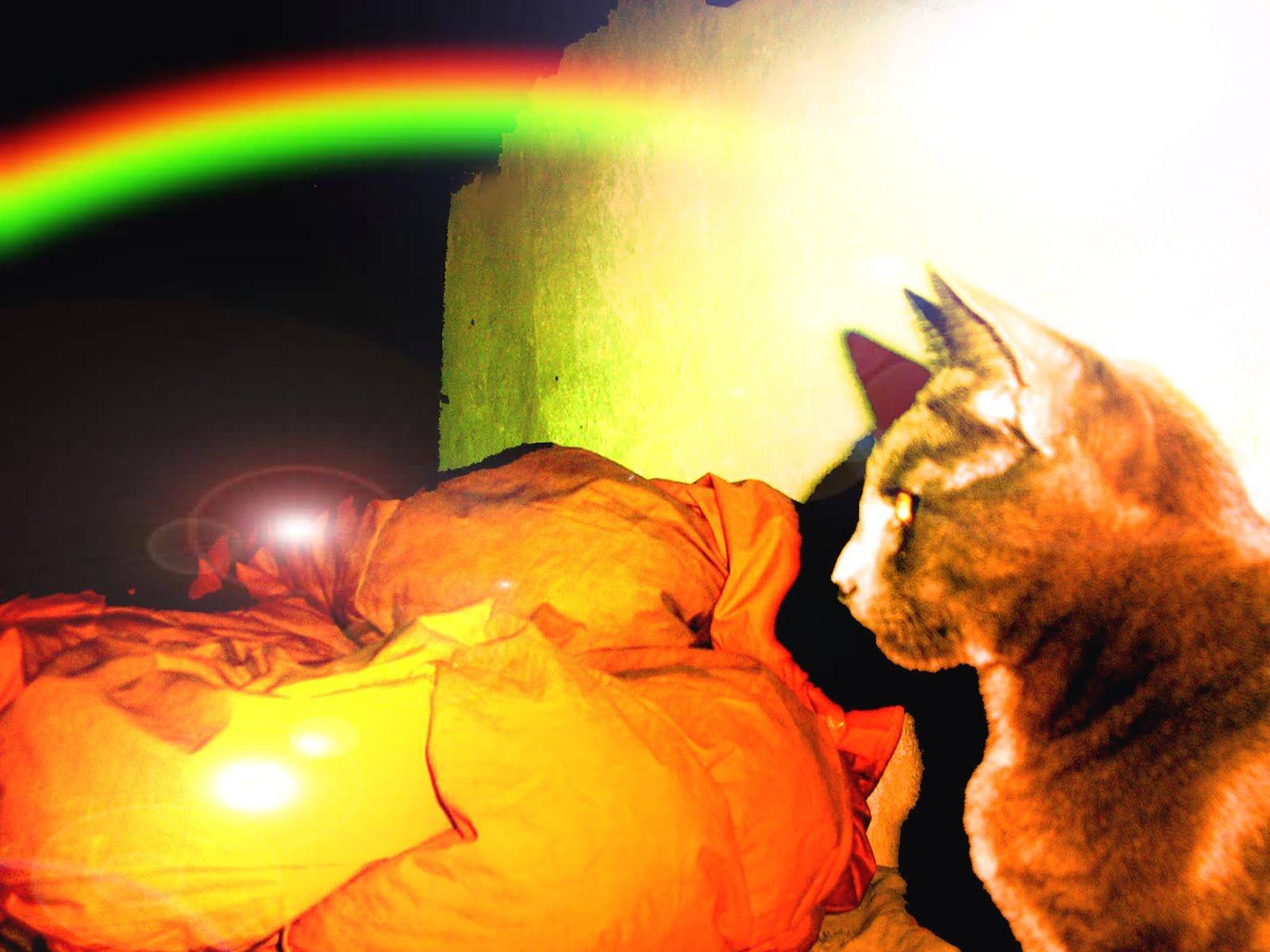 Hugo y el arcoiris...