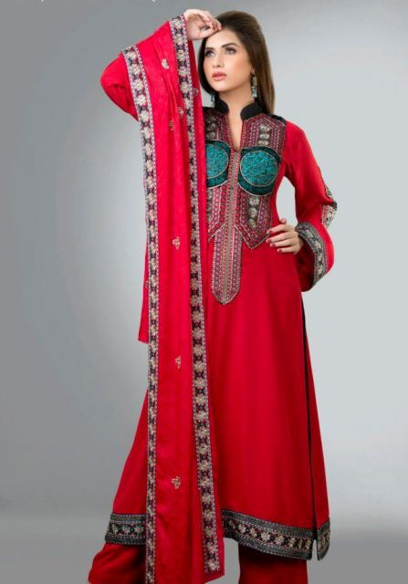 Fancy party dresses salwar kameez designs 2013 Fashion Designs Dresses 2013