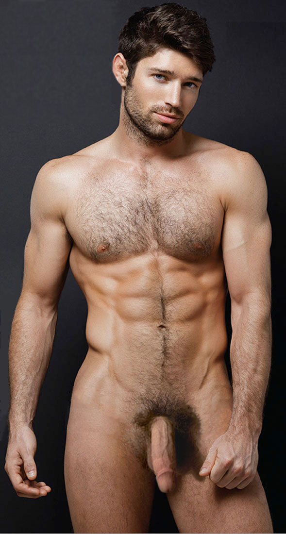 Hairy Handsome Male Nude Models