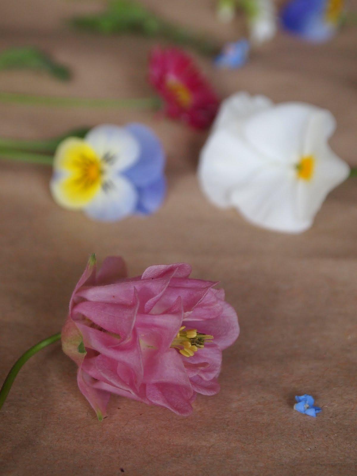 Sušenie kvetov