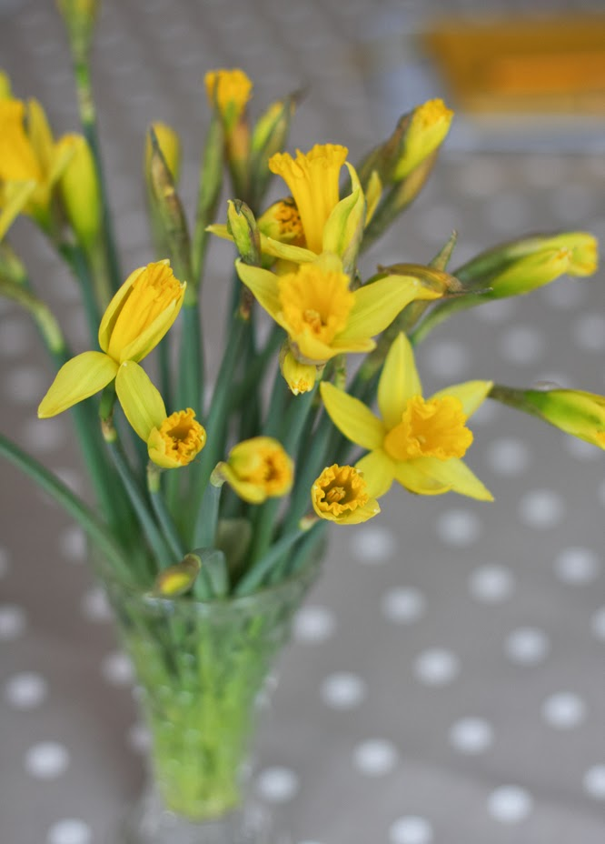 Daffodils on my kitchen table - by Alexis on somethingimade.co.uk