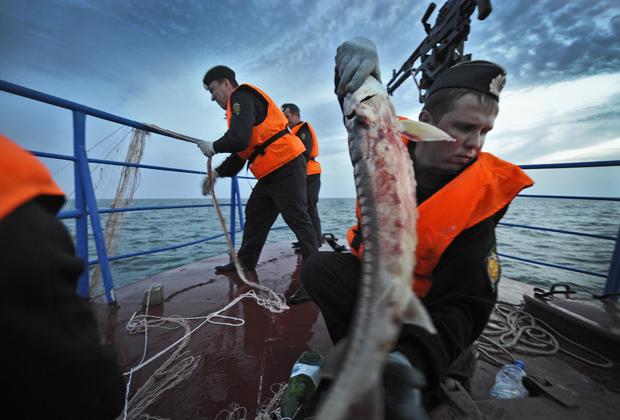 рыбалка браконьерами на каспии видео