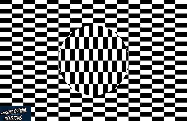 FROM MY WINDOW...: OPTICAL ILLUSIONS