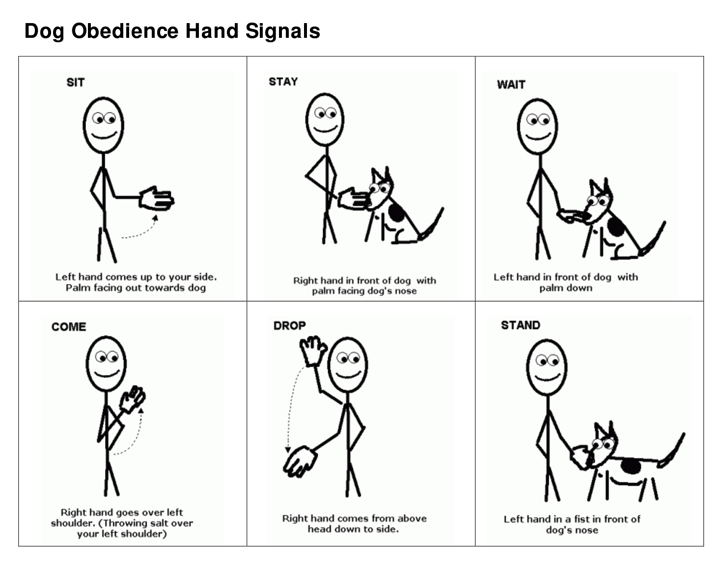 Training Your Dog With Sign Language Signals