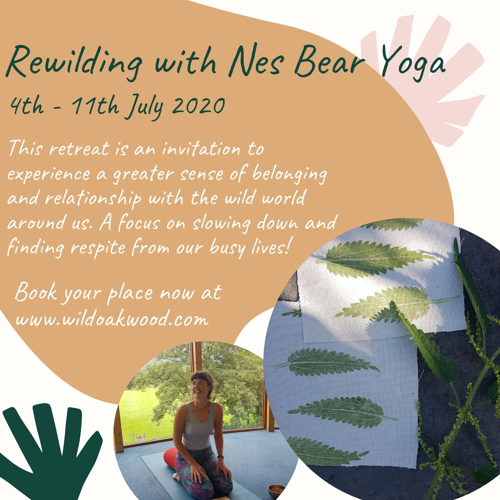 Rewilding with nes Bear
