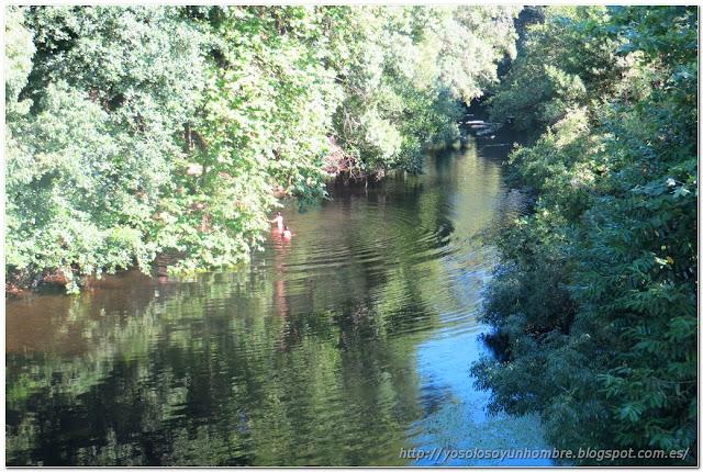 Niños saltando y bañándose en el río Lambre