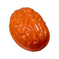Brain Ice Mold1