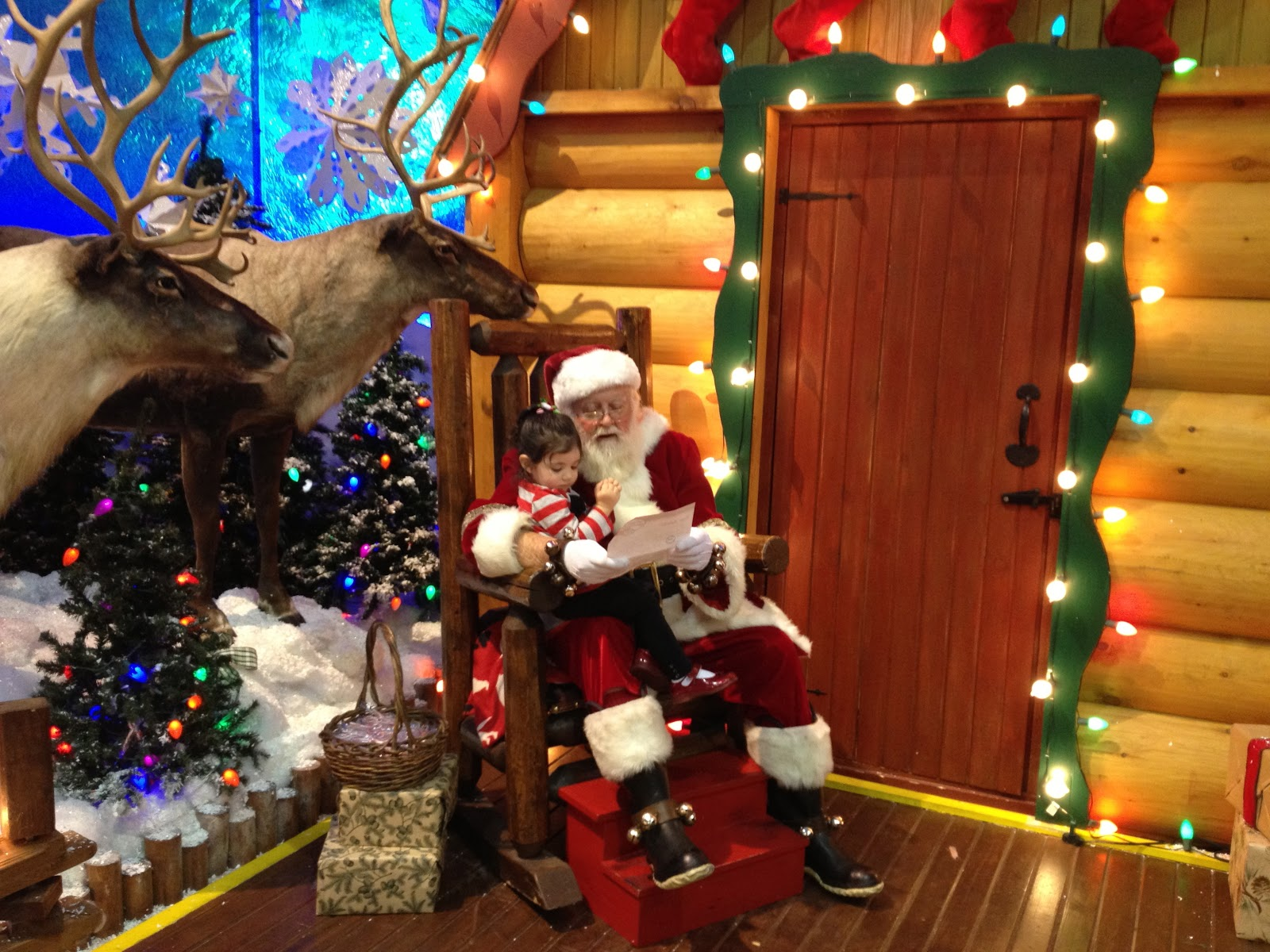 Savvy and Sassy: Free Photo With Santa at Bass Pro Shops
