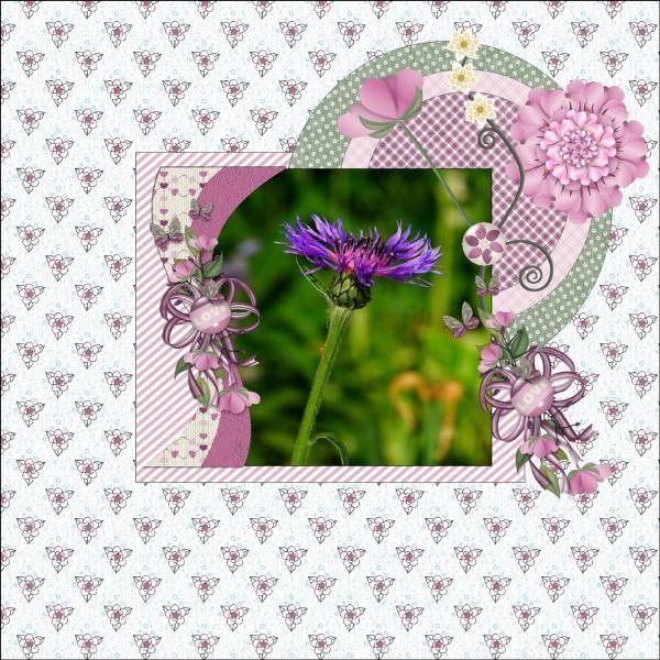 July 2016 Purple - Pink - Green