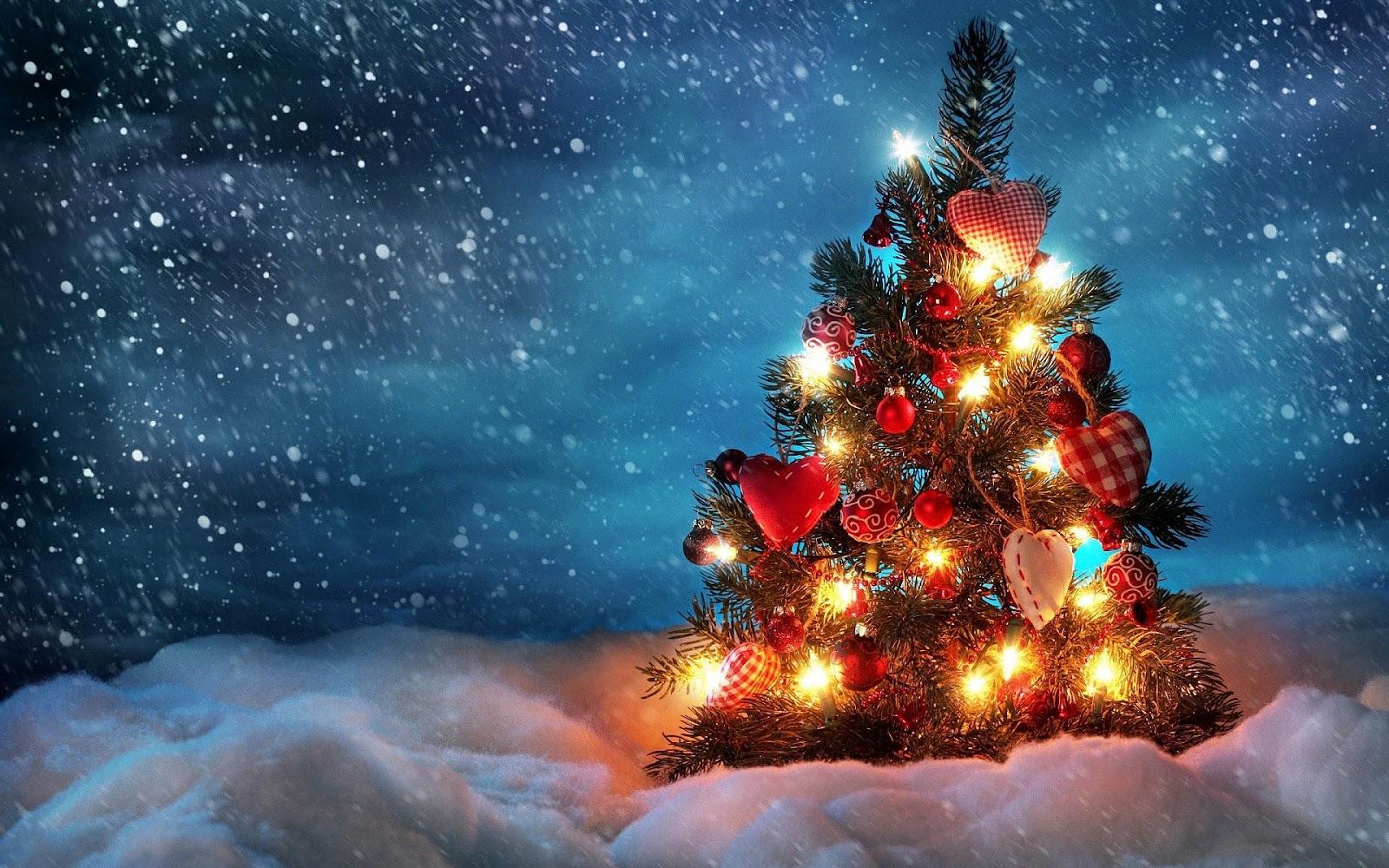 http://4.bp.blogspot.com/-u3OSXPGoKFI/UCkKT6myjJI/AAAAAAAAEqE/gOUOmCbIuww/s1600/hd-kerst-wallpaper-met-een-brandende-kerstboom-en-sneeuw-kerst-achtergrond-foto.jpg