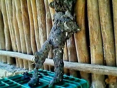 extraterrestre quemado meteorito en ichmul mexico
