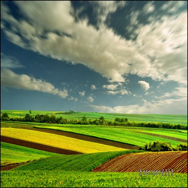 Pannonian Plain, Serbia