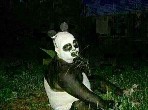 Panda Parodi Malaysia