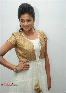 Priyamani Latest Pictures in Salwar Kameez at Chandi Movie Trailer Launch  0020