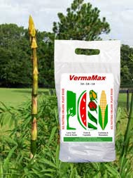 Certified organic bamboo plant fertilizer