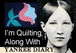 Yankee Diary