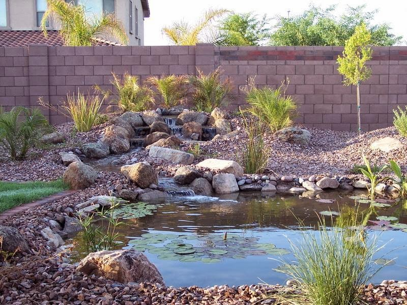 Desert Landscaping picks the Plants Ideas