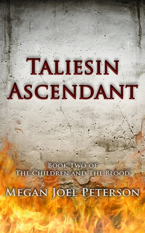 Taliesin Ascendant by Megan Joel Peterson