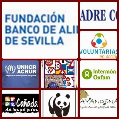 BIENVENIDA A LOS PROYECTOS 13-14