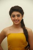 Pranitha latest dazzling pics-thumbnail-18