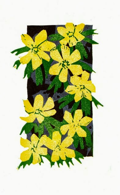 Winter aconites flowers linocut print
