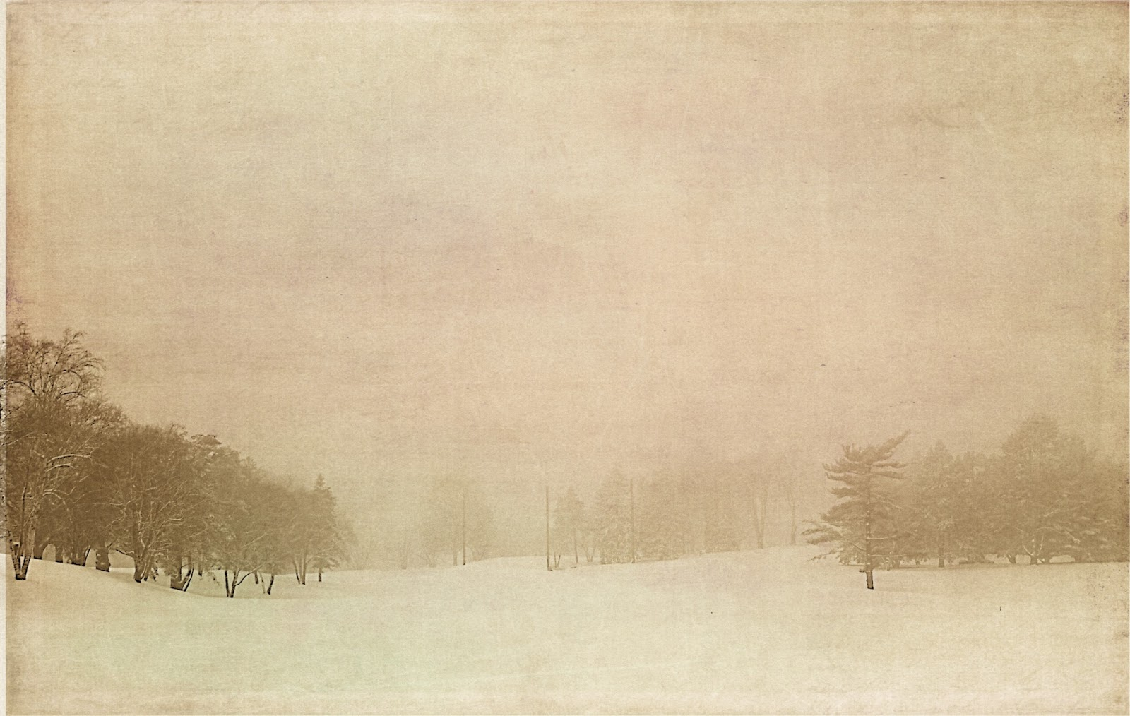 snowy landscape with texture