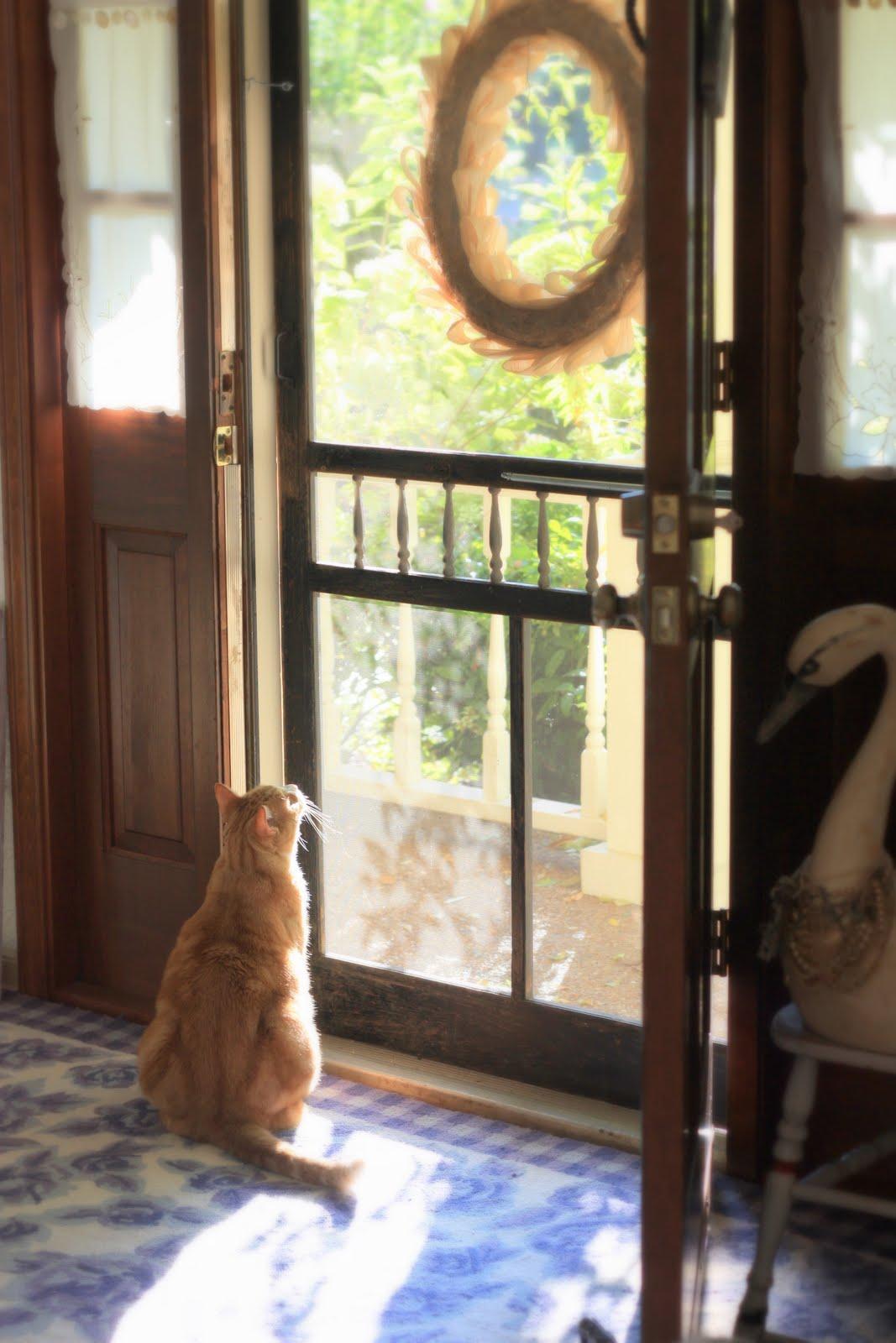 Old Screen Door : Come in my door is always open on pinterest screen doors